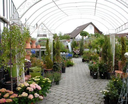 Außengelände von BlumenGarten Marquardt
