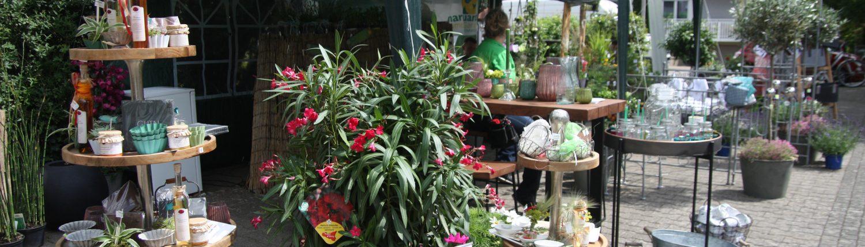 Sommeranfang bei BlumenGarten Marquardt