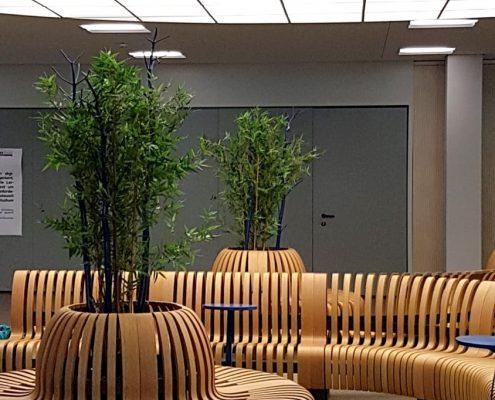 Ein von BlumenGarten Marquardt mit Innenraumbegrünung ausgestatteter Eingangsbereich